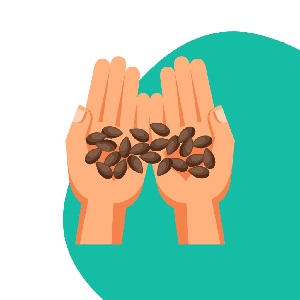 Hände mit Samen